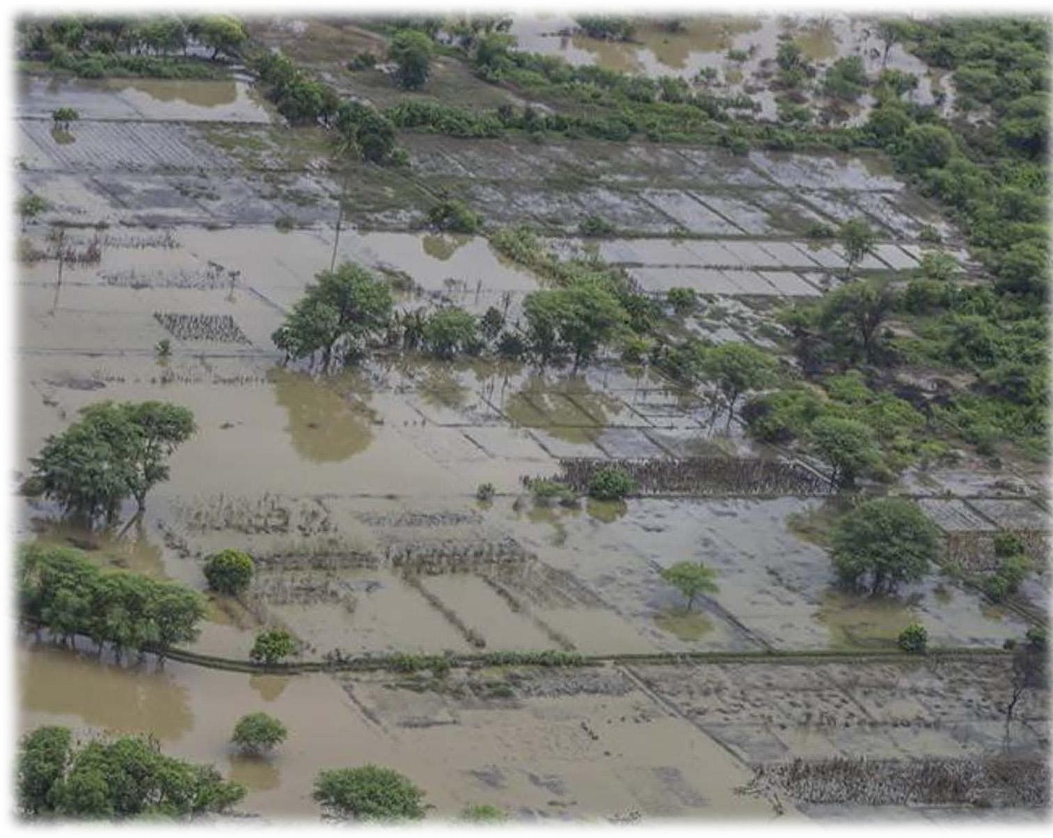 Die Landwirtschaft stark beschädigt.